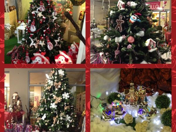 Aspettando il Natale da Carollo Fiori Centrale di Zugliano (VI),